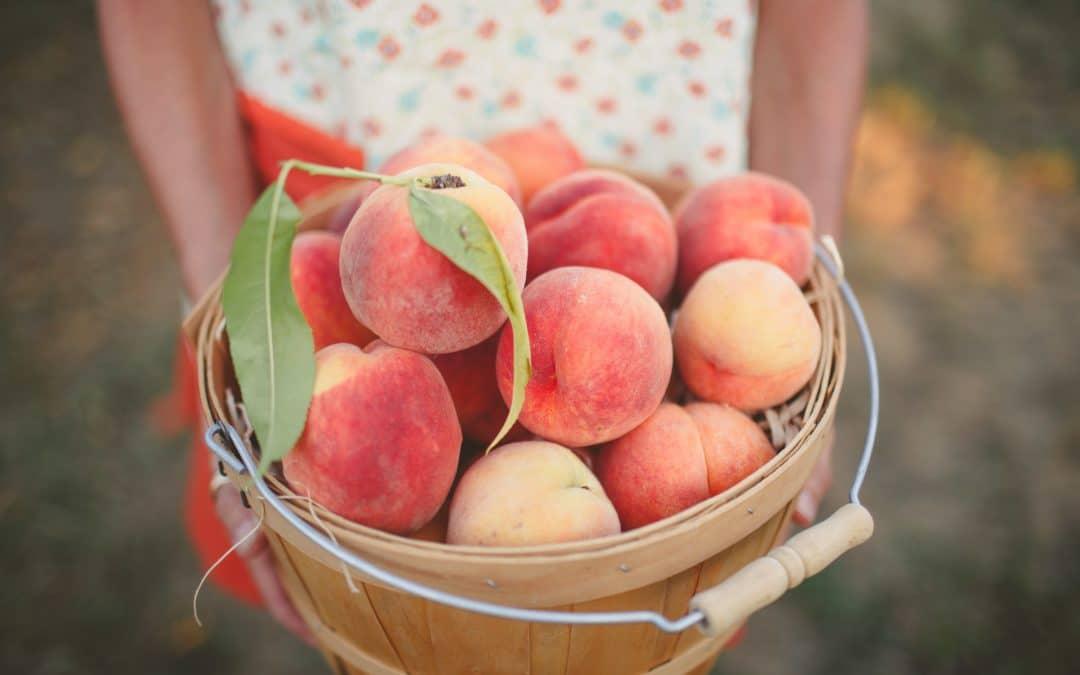 Frozen Peach Pie Filling